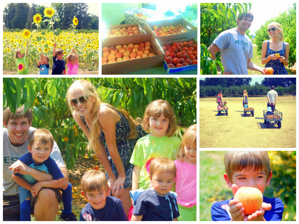 Peach picking with friends at Jossy Farms. Photos credits: Cynda Machuca and Natalia Redyk